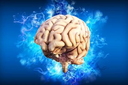 brain-4314636_960_720 (1)