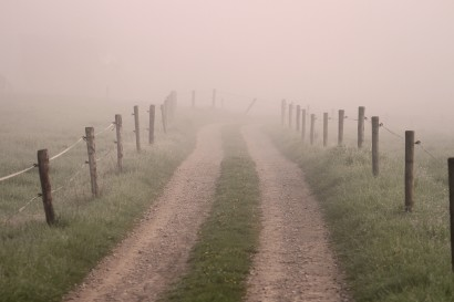 landscape-horizon-fog-mist-field-morning-921658-pxhere.com